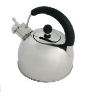 Чайник стальной 3,0л матовый RWK033-3.0L-S K12