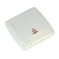 Выключатель двухклавишный с подсветкой цвет белый 10А 250В
