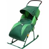Санки-коляска Nika Тимка 2 Комфорт зеленый